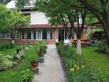 Guesthouse Maramureş county, Casa Danci Guesthouse