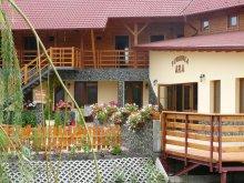 Bed & breakfast Valea Uzei, ARA Guesthouse