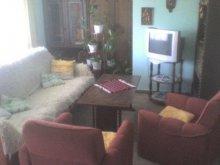 Cazare Balatonszemes, Apartament Sarang