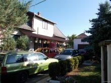 Accommodation Tiszakeszi, Szőke Tisza Apartment