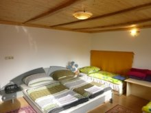 Accommodation Keszthely, Active Guesthouse