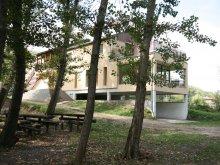 Szállás Borsod-Abaúj-Zemplén megye, Bodrogzug Vendégház