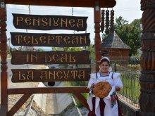 Pensiune Hoteni, Pensiunea în deal La Ancuța