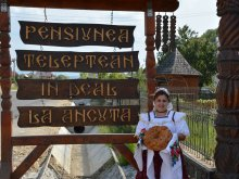 Pensiune Șieu, Pensiunea în deal La Ancuța