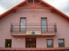Casă de oaspeți județul Csongrád, Casa de oaspeți Szélkakas