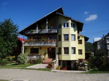 Bed & breakfast Stânca (George Enescu), Orhideea Guesthouse