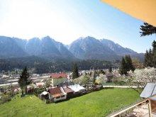 Casă de oaspeți Valea Mare-Podgoria, Pensiunea Edy