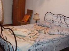 Casă de vacanță Petricani, Casa de vacanță Căsuța Verde