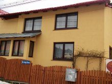 Vendégház Berevoești, Doina Vendégház