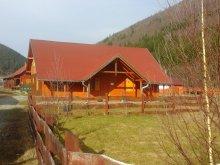 Accommodation Barajul Zetea, Tichet de vacanță, Turista House