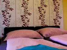 Accommodation Püspökszilágy, Fáradt Vándor Guesthouse