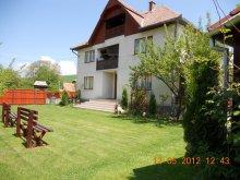 Accommodation Satu Nou (Pârgărești), Bordó Guesthouse