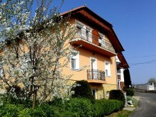 Accommodation Garabonc, Margareta Apartment