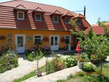 Apartament Sfântu Gheorghe, Pensiunea Todor