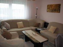 Accommodation Csokonyavisonta, Holiday Apartman