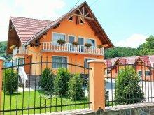 Accommodation Mureş county, Flamingo Guesthouse