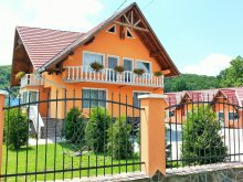 Guesthouse Valea Mare (Urmeniș), Flamingo Guesthouse