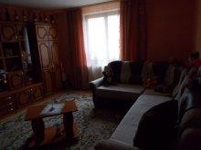 Accommodation Mădăraș, Katalin Chalet