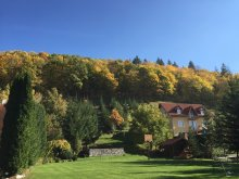 Bed & breakfast Băile Selters, Hetvezer Guesthouse
