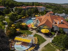 New Year's Eve Package Látrány, Kolping Hotel Spa & Family Resort