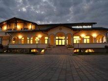Cazare Dumbrăvița, Pensiunea Curtea Bizantina