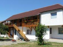 Accommodation Ocna de Jos, Anciupi Guesthouse