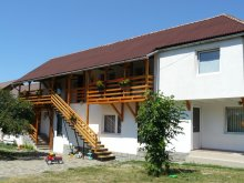 Accommodation Șiclod, Anciupi Guesthouse