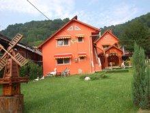 Accommodation Broșteni (Costești), Dorun Guesthouse