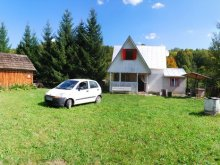 Kulcsosház Mirkvásár (Mercheașa), Okee-home