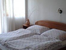 Apartment Balatonszemes, Anita House