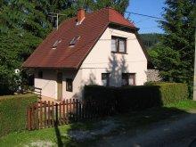 Casă de oaspeți Pécs, Casa de oaspeți Vojtek