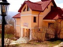 Pensiune Cucuieți (Solonț), Pensiunea Ambiance
