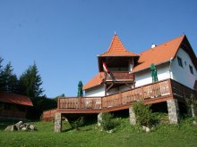 Casă de oaspeți Ungureni (Tătărăști), Cabana Nyergestető