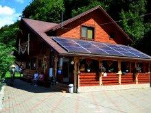 Pensiune Almașu Mic (Sârbi), Pensiunea Sequoia