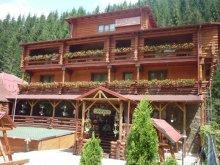 Accommodation Valea Hotarului, Casa Wiarusti Guesthouse