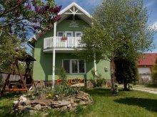 Accommodation Pârvulești, Fortyogó Guesthouse