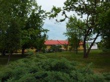 Hostel Kecskemét, Tabără de tineret, Zonă de camping