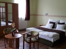 Accommodation Hajdúnánás, Réka Guesthouse