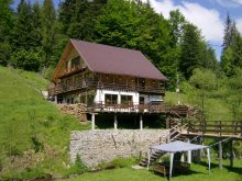 Cabană Valea Cocești, Cabana Cota 1000