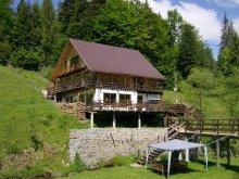 Cabană Valea Giogești, Cabana Cota 1000