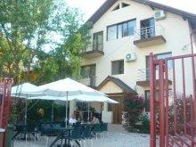 Accommodation Amzacea, Casa Firu Guesthouse