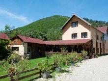 Accommodation Jidoștina, Domnescu Guesthouse