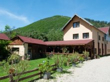 Accommodation Tonea, Domnescu Guesthouse