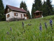 Accommodation Borzont, Ezüstvirág Chalet