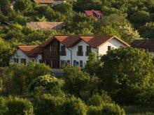 Accommodation Săvădisla, Casa Iuga Guesthouse