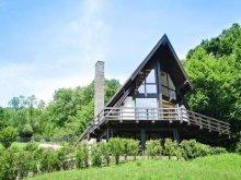 Villa Lădăuți, Negraș Chalet