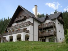 Accommodation Prisaca Dornei, Bucovina Lodge Guesthouse