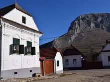 Accommodation Bârzan, Ági Guesthouse
