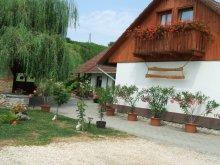 Cazare Dunasziget, Casa de oaspeți Józandűlő