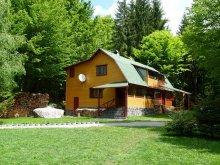 Accommodation Karcfalva (Cârța), Szilvia Guesthouse